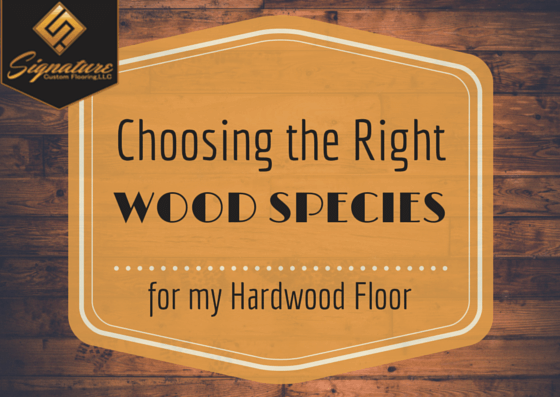 hardwood floor wood species